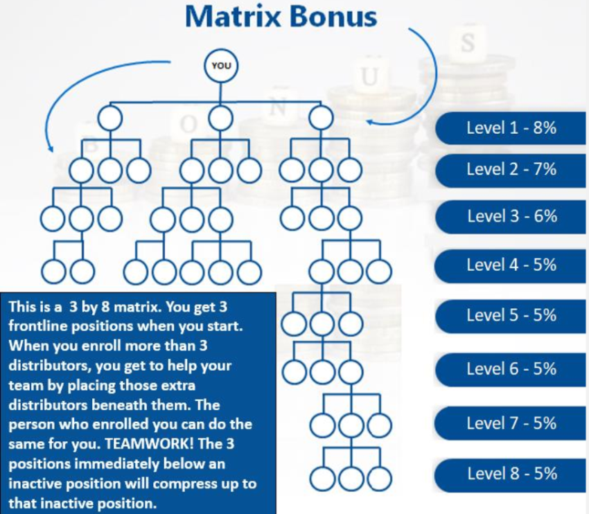 celluvation matrix bonus